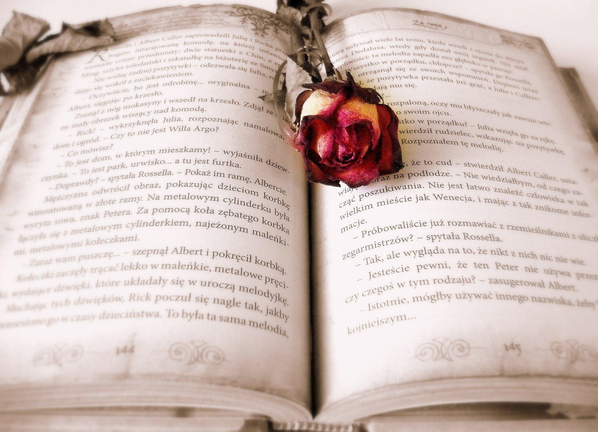 livre dépendance amoureuse